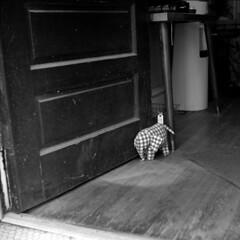 lemf (pavel photography) Tags: doorstop elephant opendoor shortnorth entrance superikonta ilford street film 6x6film 6x6 columbus vintage120camera blackandwhitefilm bwfilm mediumformatfilm mediumformat monochrome