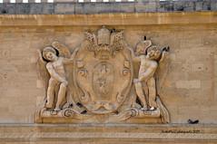Avignon (Vaucluse) (mduthet) Tags: avignon vaucluse