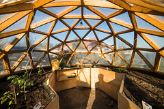 inside the dome (fateish) Tags: garden garten dome green house wood holz gewächshaus hochbeet raised bed soil tomatoe cucumber