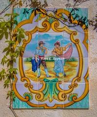 San Giovanni di Stella Cilento (SA), 2019. (Fiore S. Barbato) Tags: italy campania cilento stella san giovanni sangiovanni monte confraternita confraternite altare altari reposizione visita