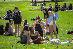 2019 Pinwheel Day (haverford_college) Tags: 2010s 2000s outside outdoors exterior all rights allrights patrick montero 2019 april spring foundes foliage green greenery leaves tree trees grass tradition pinwheel pinwheels annual bush color colorful student activity horizontal