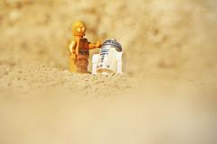 LEGO C-3PO and R2-D2 (weeLEGOman) Tags: lego star wars minifigure minifigures c3po r2d2 droid desert storm toy macro photography uk nikon d7100 105mm rob robert trevissmith weelegoman