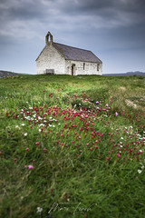 St Cwyfans Church in the Sea (MDJL Landscapes) Tags: flowers grass spring nationalpark snowdonia northwales anglesey churchinthesea stcwyfanschurch