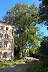 Bogensee_(CP) - 343 (sigkan) Tags: deutschland brandenburg bogensee lostplaces nikoncoolpixp520 vondetkanaccount