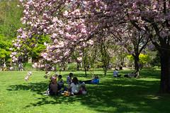 Couleurs de Printemps (annepasquet) Tags: 2019 fr france fujifilm landscape maulevrier avril colors mer nature printemps spring