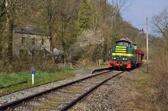 TSP 7385 Purnode (Davy Beumer) Tags: tsp pft sncb nmbs hlr73 hlr737482 chemin de fer du bocq purnode caboteur 7385 7402