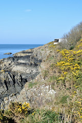 North Down Coastal Path west of Grey Point (John D McDonald) Tags: northdowncoastalpath northdowncoast coastalpath coast northdown countydown codown northernireland ni ulster nikon d3300 nikond3300 belfastlough rock rocks sea shore seashore seapark seaparkholywood holywoodseapark holywood helensbay crawfordsburncountrypark
