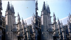 Batch E 0123 (dizzygum) Tags: vintage stereo 3d slide image france chartres cathedral 1960