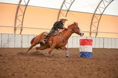 Brenda (wysharp) Tags: barrelracing cowgirl horse