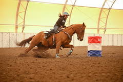 Stacey (wysharp) Tags: barrelracing cowgirl horse