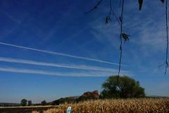 OTOÑO (NIKONIANO) Tags: harvest atoño autumn