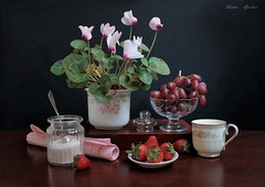 Make  Life  Sweet...! (Esther Spektor - Thanks for 16+millions views..) Tags: stilllife naturemorte bodegon naturezamorta stilleben naturamorta composition creativephotography spring tabletop flowers plant cyclamen food strawberry grape cluster dessert pot cup jar goblet napkin lid saucer ceramics glass ambientlight reflection pattern white green pink red brown black canon estherspektor sugar teaspoon