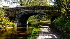 Lancaster Canal (peterileypics) Tags: bridge preston canal