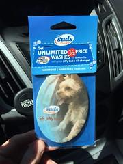 Rusty, is that you?! (PEEJ0E) Tags: wash car express hamilton suds dog freshener air rusty