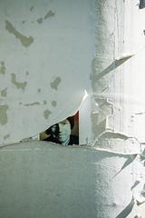 20190418-030 (sulamith.sallmann) Tags: ackerstrase berlin brunnenviertel defekt deutschland europa gesicht kaputt mitte papier wedding zerrissen zerstört sulamithsallmann