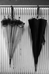 Les parapluies d'Alençon (Tonton Gilles) Tags: parapluies noir et blanc graphisme lignes transparent transparence radiateur fonte parapluie accrochés club photo dalençon