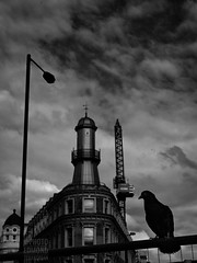 Oysterhouse Lighthouse (Edmond Terakopian) Tags: kingscross london lighthouse oysterhouse building architecture streetphotography bw monochrome blackandwhite bird pigeon silhouette