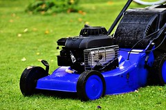 Landscaping Care Tips for this Spring (nuimagelandscapinginc) Tags: lawn service landscaping care tips