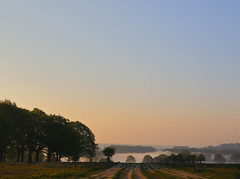 _T6A6023REWS Richmond Morning, © Jon Perry, 20-4-19 zbq (Jon Perry - Enlightenshade) Tags: dawn morning richmondpark mist fog jonperry enlightenshade arranginglightcom