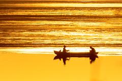 rowing in the spring evening_ (VisitLakeland) Tags: finland kallavesi kuopio kuopiotahko lakeland auringonlasku backlight boat evening fisherman fishing ilta järvi kalastaa kalastaja kevät lake luonto maisema nature outdoor ranta row rowing scenery soutaa spring sunset vastavalo vene