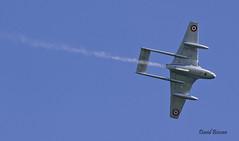De Havilland DH100 Vampire Fb 6 n° 624  ~ F-AZHX / 4-LH  VZ152 (Aero.passion DBC-1) Tags: 2006 meeting fertéalais dbc1 david biscove aeropassion avion aircraft aviation plane collection airshow de havilland dh100 vampire ~ fazhx 4lh vz152