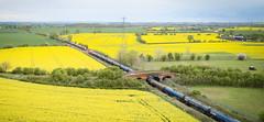 60039 and 60100 at Portway (robmcrorie) Tags: 60039 60100 portway elford staffordshire bridge kingsbury oil trains 6m57 6e54 lindsey humber phantom 4 rape fields