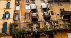 Verona, Italy (tomst.photography) Tags: verona italia italien italy canonm50 canon canonphotography travel travelphotography old vintage tomst