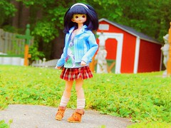 Too Cool For School (Forest_Daughter) Tags: fairyland multihead cupid azone pure neemo hybrid doll