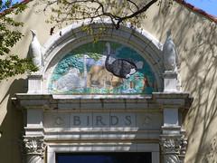 St Louis, MO St Louis Zoo architectural detail (army.arch) Tags: stlouis missouri mo zoo birds birdhouse architecturaldetail