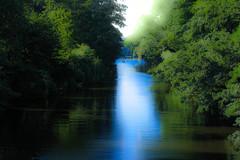 Citycenter Hamburg (bhermann.hamburg) Tags: hamburg alster leinpfad blau blue gruen green baum tree wasser water