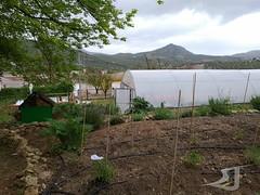 Visita-Centro-Ocupacional-Albasur-Asociacion-San-Jose-190425-0061 (Asociación San José - Guadix) Tags: albasur centro ocupacional manipulados asociación san josé guadix abril 2019