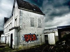 Une certaine idée de l'Elysée (Jean-Luc Léopoldi) Tags: démolition maison sinistre poe poésieurbaine cielmenaçant désastre findumonde ruines gloomy