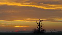 Moody sunrise (damianziel) Tags: pentax pentaxk50 pentaxart tamron 70300 landschaft landscape sky cielo colours color colorful sunrise poland polska