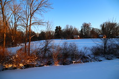 January 20 2019 (Ken S Three) Tags: morning morninglight sunrise winter snow michigan nature barn