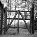 gate jockey hollow