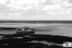 Lège-Cap-Ferret : Le Four (damzed) Tags: pentaxk1ii pentaxdfa2470 aquitaine nouvelleaquitaine gironde lègecapferret lefour noiretblanc monochrome bateau bassindarcachon