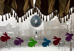 Snow Bunnies (Mr. Happy Face - Peace :)) Tags: art2019 wtbw art bunnie snow bunny rabbit catchycolor spring storm yyc cowtown calgary alberta canada