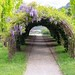 Aussichtsplattform Algund | Palemen | Blumen | Weidenkranz | Südtirol