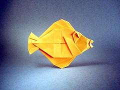 Yellow Tang for Mariko - Michael G. LaFosse (Rui.Roda) Tags: origami papiroflexia papierfalten fish poisson pez peixe yellow tang for mariko michael g lafosse