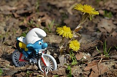 It`s bicycle season! (KvikneFoto) Tags: blomst flower vår spring natur smurf tamron nikon mf