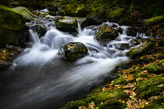 Cascade (Rico the noob) Tags: dof rock d850 lakedistrict 2470mm nature water outdoor stones rocks 2470mmf28e longexposure travel published leaves 2018 landscape uk river