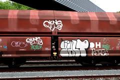 Graffiti on Freights (wojofoto) Tags: amsterdam nederland netherland holland graffiti streetart cargotrain vrachttrein freighttraingraffiti freighttrain freights fr8 wojofoto wolfgangjosten yalt dins omce wrong tags tag