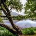 Kylemore Abbey - Pollacapall Lough