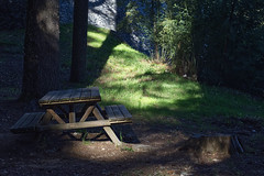 The tilted table (lebre.jaime) Tags: portugal beira covilhã forestpark rest place table tilted tree grass light shadow nikon d600 digital carlzeiss planar cf2880 affinity affinityphoto stone wall