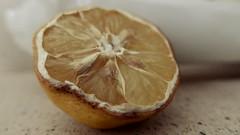 Do you Like this Lemon too? (ghiro1234 [♀]) Tags: macromondays eyeofthebeholder occhidichiguarda 29042019 robertaghidossi piaceancheavoiquestolimone nonèbellociòcheèbellomaèbellociòchepiace saràvero
