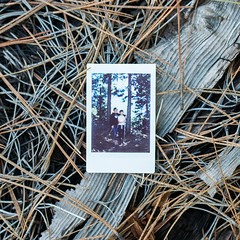 28.100 (tara on the wander) Tags: instantfilm 28100 tarainstapix 100x2019 100xthe2019edition 28
