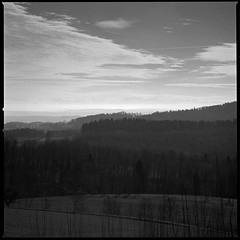 waelde [pan-f] (FloatingLens) Tags: 2019 bw carlzeiss film germany grain handheld ilford landscape lee lee6ndgh mediumformat mf rotationdevelopment sonnart4150 tripod v700 пленка
