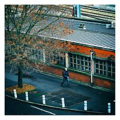 en route pour la gare (Marie Hacene) Tags: lille gare passant homme arbre murs ville street
