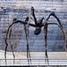 Under the Spider