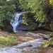 Cedar Falls_DSC1508